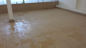 Franklean Carpet And Tile Cleaning Phone 4111 819 90