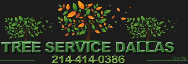Tree Service Dallas