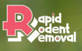 Rapid Rodent Removal Dallas