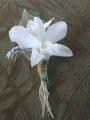 Florescence Floral Designs, LLC