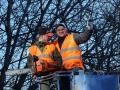 Tree Services Hamilton