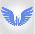 Broken Wing Foundation