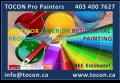 TOCON LTD pro Painters