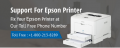 Epson Printer Technical Support Phone Number 1-800-243-0019