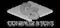 Gonzalez & Sons Flooring Design