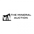 The Mineral Auction