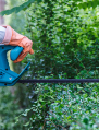 Greencoat Gardeners || 07776 097961
