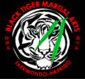Black Tiger Martial Arts