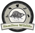 Hamilton Animal Control