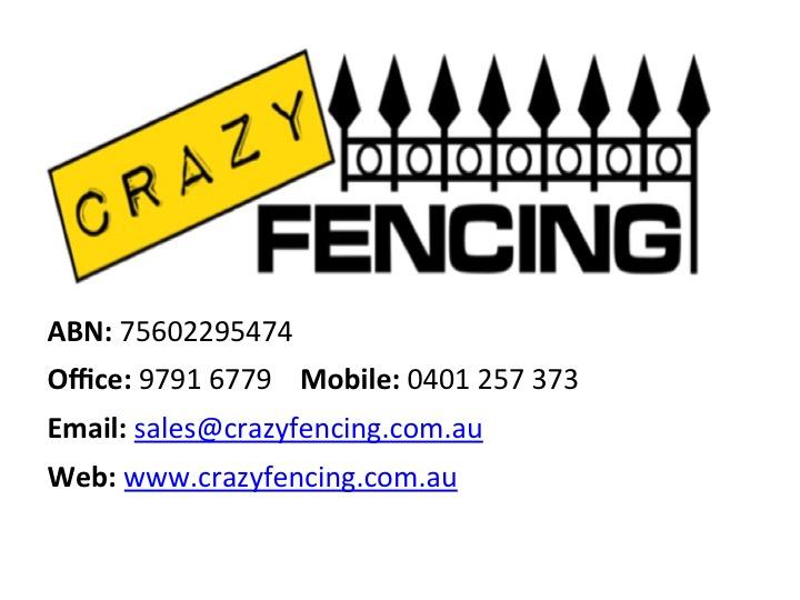 CRAZY FENCING