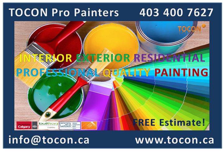TOCON LTD pro Painters