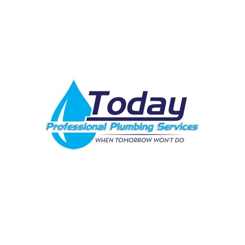 Today Professional Plumbing Services