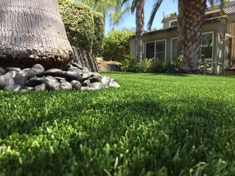 Purchase Green Artificial Grass - Dallas