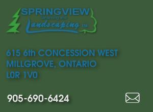 Springview Gardening & Landscaping Ltd