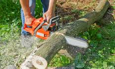 Texscape Tree Services